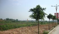 宾阳县城城东新区建设用地使用权公开转让(宗地号:A-08-02-1、A-08-02-2)